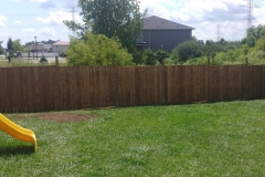 Fence-after-.jpg-adjusted