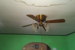 Ceiling Removal & Replacement Before