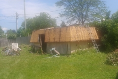Shed-Demolition-Before-