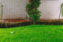 Garden-Wall-Handyman